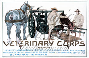 Veterinary Corps Poster